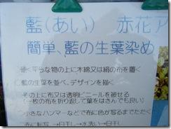 seikoの記録17 002