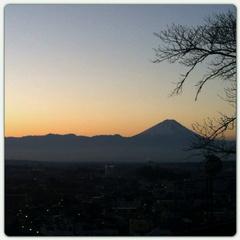 縁ジェリスト日記273〜朝焼け