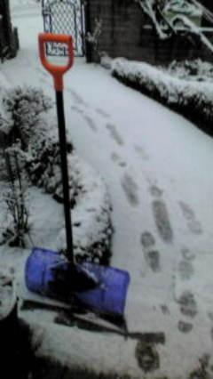 今季、四回目の雪