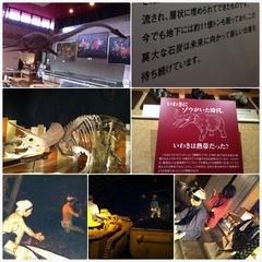 縁ジェリスト日記〜いわき化石、炭鉱博物館