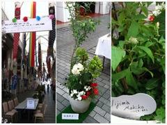 縁ジェリスト日記〜花の寄せ植えコンテスト