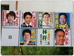 縁ジェリスト日記456〜参議院山梨選挙区